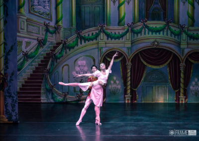 Moscow Ballet-1183
